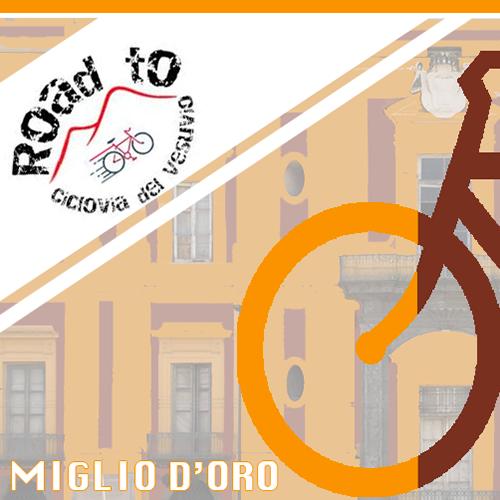 visite bici vesuvio